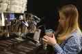 Caffe George Budějovická | Caffe Česká spořitelna | Kavárna Česká Spořitelna